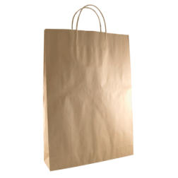 Paper Twisted Handle Bags