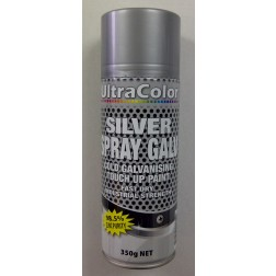 Silver Gal Paint