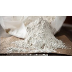 Diatomaceous Earth (DE) 12KG Bag