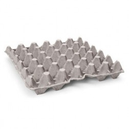 Egg Trays (30 eggs)